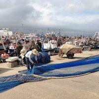 Mending the nets 3